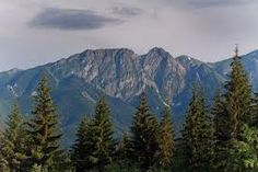 Image result for carpathian mountains