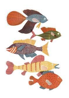 Barbara Dziadosz Illustration Really nice illustrated fish