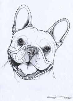 Frenchie , French Bulldog , pet portrait , dog portrait , teunen
