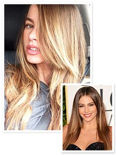 Sofia Vergara has gone back to her sunny roots! The star debuted her light hair color on her Instagram today, and although she sports a deep chestnut hue on the big and small screens, her latest 'do is a more organic take on her look.