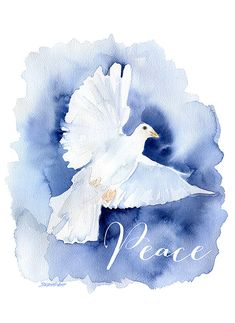 Peace Dove Watercolor Painting Christmas Cards Set by SusanWindsor