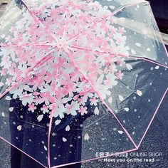 """Sweet cherry blossom students transparent umbrella Coupon code """"cutekawaii"""" for 10% off"""