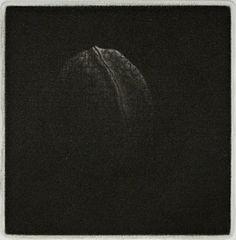 Yozo Hamaguchi - Walnut, 1982 (Mezzotint)