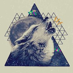 graphic design, vintage, wolf, triangle