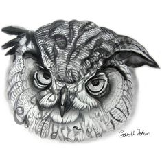 Eagle Owl in Pencil A4 by apieceofnature on Etsy, $18.00