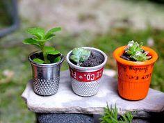 small world land: Miniature Greenhouse