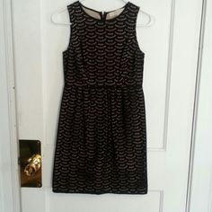 Loft Eyelet Dress pxxs Like new Loft dress, worn once! No signs of wear. Add a cardigan and it's perfect for work! LOFT Dresses Mini