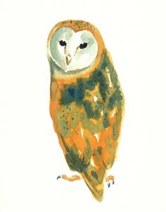 BARN OWL by DIMDI Original watercolor painting 8x10inchxxxxAll the animals that you wantxxxx