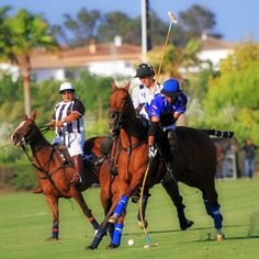 Santiago_Torres_y_David_Stirling #Ayala #Valiente.  VALIENTE WINS THE #ISOLAS #BRONZE CUP OF THE 43rd LAND #ROVER INTERNATIONAL #POLO TOURNAMENT. Valiente won the Bronze Cup Isolas by defeating Ayala Polo Team by 11-7 and rose up the first trophy of the season at Santa Maria High Goal Polo Club. Bob Jornayvaz's team started to show its best in the second chukker and since then mastered the game. Valiente dominated the pace of the game and the marker to the end.