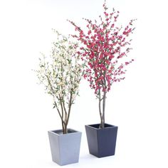Cherry Blossom Artificial Tree - Pink or Cream – Allissias Attic & Vintage French Style