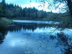 Bruntis loch - Kirroughtree - favourite pace to run