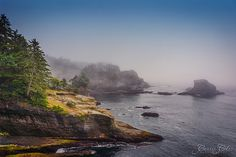 Cape Flattery is the northwesternmost point of the contiguous United States. It is in Washington State on the Olympic Peninsula, where the Strait of Juan de Fuca joins the Pacific Ocean.  Cape Flattery can be reached from a short easy hike, most of which is boardwalked. It was rather foggy the day we visited, but we enjoyed our time here as a family.