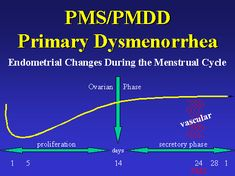 Treating the Female Patient: The Female Menstrual Cycle