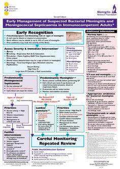 Meningococcemia Clinical Presentation