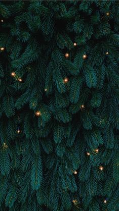 green Christmas tree with lights iPhone Wallpapers Holiday Iphone Wallpaper, Cute Christmas Wallpaper, Christmas Tree Background, Christmas Aesthetic Wallpaper, Holiday Wallpaper, Winter Wallpaper, Green Wallpaper, Wallpaper Backgrounds, Iphone Wallpapers