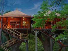 Tree House Resorts In The Hills That Are Almost Too Cool For Summer