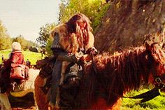 (GIF) Thorin and his horse having a hair flipping contest.