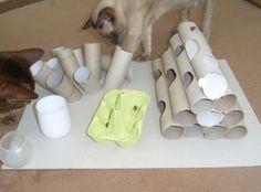 Jeu pour chat facile à fabriquer