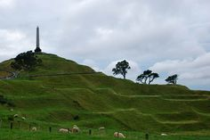 Visit One Tree Hill, Auckland, New Zealand