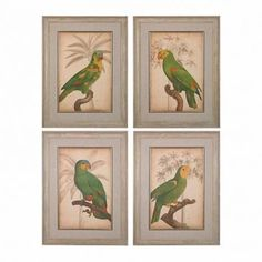 Parrot and Palm Fine Art Giclee in Washed Wood Frame  Set of Four Framed Art Pieces with Vibrant Parrots on Beige Palm Background Parrot and palm i,ii,iii,iv -fine art giclee print on satin matte paper. Framed in our washed wood tone frame and placed under glass. Matte is linen with antique gold trim.