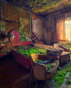 mossy #house #forgotten #abandoned