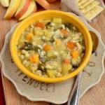On my way to the grocery store, think I'll try this one – Crock Pot Chicken & Barley Vegetable Stew