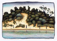 Shrubs and Sandhill at Wamberal By Reg Mombassa
