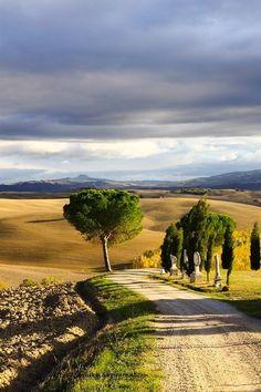 20 Tuscany (Italy) by Bebinski E