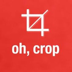 Oh, crop. I must warn you, I will be saying this incessantly for the rest of the week.