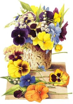 Beautiful pansies by Marjolein Bastin.