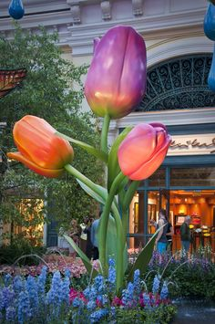 Bellagio Conservatory, Las Vegas...such a beautiful place to walk through.
