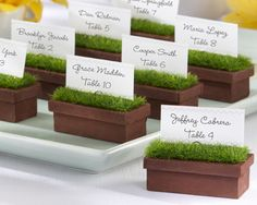 Fresh and sunny, miniature wooden planters filled with green artificial grass make great place card holders for an indoor or outdoor event. Discount prices.