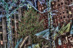 New York 2014-31