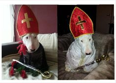Bullie 4 Pope