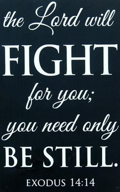 The Lord will fight for you; you need only be still. #Exodus 14:14 #biblical #quote #Amen