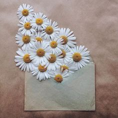 """floralls: """" envelope series III by anna remarchuk """""""