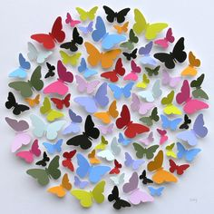 Multi-coloured Box of Butterflies by Cissy Cook Designs
