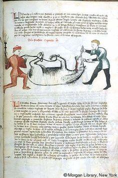 [Livro de la Menscalcia de li cavalli], MS M.735 fol. 69r - The Pierpont Morgan Library