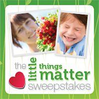 Scotch - Brite ™ Brand Little Things Matter Sweepstakes - MumbleBee Inc