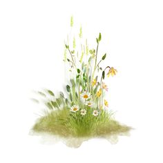 скрап_клипарт — альбом «СКРАП НАБОРЫ / ДЕТСКИЕ СКРАПЫ / NLD An Eternal... ❤ liked on Polyvore featuring flowers, fillers, plants, grass and nature