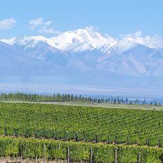 """☀️ Location: Valle de Uco - Mendoza, Argentina. Photo © @southamerica"""
