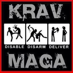 Disable. Disarm. Deliver.  Krav Maga!