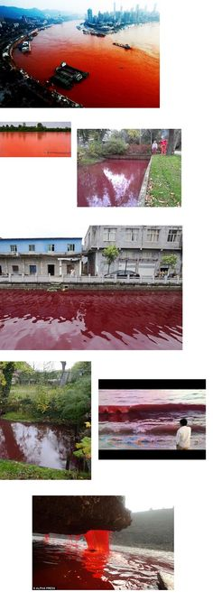 Why Are So Many Bodies Of Water Turning BlOOD RED?  Read more: http://www.prophecydude.org/news/why-are-so-many-bodies-of-water-turning-blood-red-/