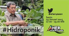 PKS Kota Bandung: Aher bicara tentang Hidroponik