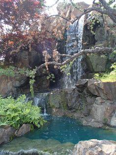 Montreal Botanical Gardens - Montreal - Opiniones de Montreal Botanical Gardens - TripAdvisor Montreal Botanical Garden, Botanical Gardens, Ponds, Ottawa, Beautiful Beaches, Waterfalls, Koi, Trip Advisor, Landscaping