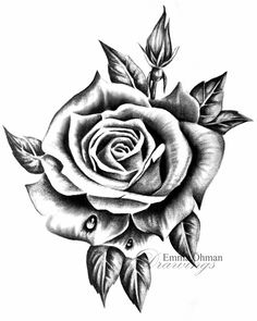 Rose Flower Tattoos, Rose Tattoos For Men, Hip Tattoos Women, Flower Tattoo Designs, Tattoos For Guys, Rose Drawing Tattoo, Tattoo Drawings, Body Art Tattoos, Hand Tattoos