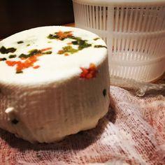 Beautiful fresh-made Queso Botanero (panela style) with carrot & jalapeño. Topolo Chiapas menu.