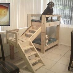Doggy bunkbeds made out of pallets. - my husband seriously needs to do this!!