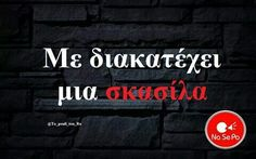 Sarcastic Humor, Funny Jokes, Funny Shit, Funny Greek Quotes, My Philosophy, Special Quotes, Funny Thoughts, True Words, Just For Laughs
