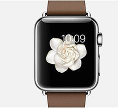Apple Watch 38 Mm Brown Modern Buckle Review #smartwatch #smartwatches